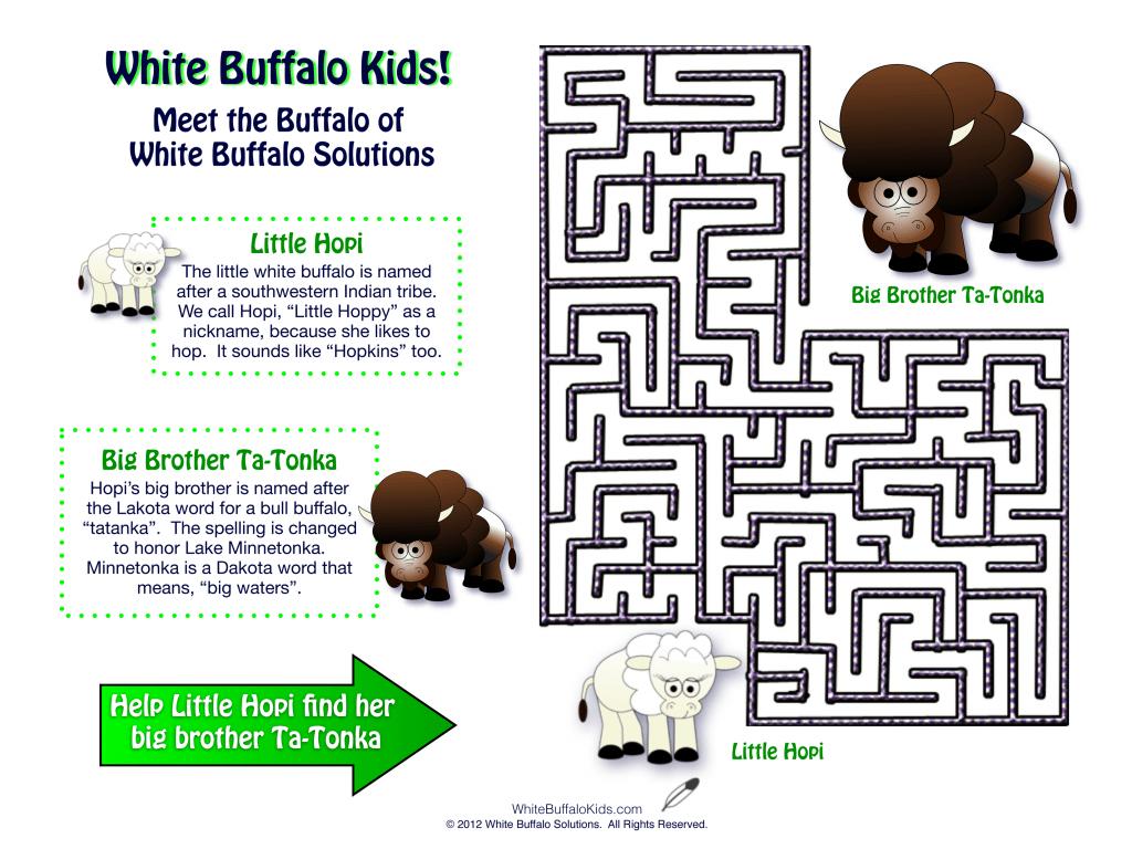 Buffalo-Maze-2